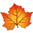 Autumn Leaves - Live Wallpaper