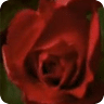 wallpaper live rose bud