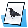 Corax Picture Viewer