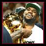 詹姆斯NBA总冠军