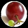 101个健康饮食习惯 101 Healthy Eating Habits
