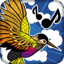 Birds Sounds: Call of Nature