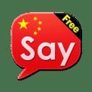 Say Chinese