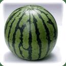 WatermelonTester