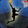 达拉斯篮球