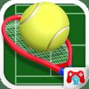 国际网球场