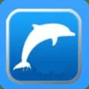 飞轮威尔小海豚