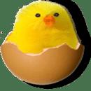 Break the Eggs