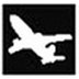 Airplane AutoSwitch 飞机模式自动切换