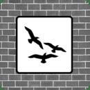 Flocking Live Wallpaper Free