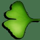 Ginkgo Audiobook Player