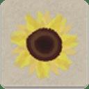 Sun Flower(timj)
