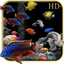 Aquarium HD Live Wallpapers