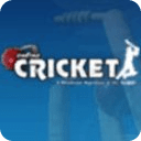 More Cricket Game