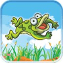 Frog Pond Magic Jump Mania VIP
