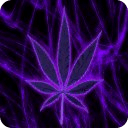 Purple Pot Leaf Keyboard Free