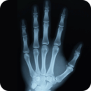 X-RAY SCANNER REAL 2014