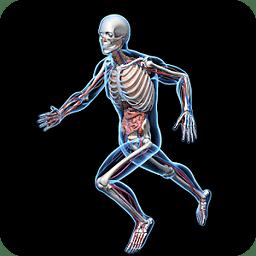 虚拟人体图片 虚拟人体图片大全 久久图片视频