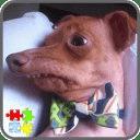 Tuna The Dog Puzzle Games