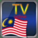 台湾高清电视在线
