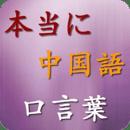 中国语口言叶 Free