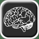 绘图记忆游戏 Memory doodles