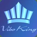 Vibo King