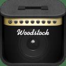 Woodstock Festival 2012