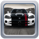 Luxury Cars in Desert LW