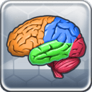 More Brain Exercise Lite