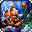 Galaxy S4 Aquarium LWP