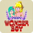 Wonder Boy (Island Adventure)