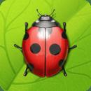 植物大战昆虫