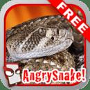 愤怒的蛇!