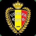 3D Belgium Football LWP