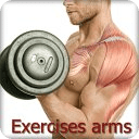Exercises arms