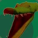 Angry Croc