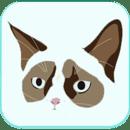 CatDogge