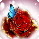 Blue Butterfly On Glitter Rose Live Wallpaper