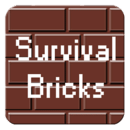 Survival Bricks (2P)