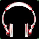 Flo Rida Songs Music Player!