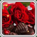 Valentines Rose live wallpaper