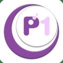 P1 Info Bits