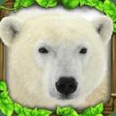 北极熊模拟