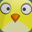 小胖鸟 Chubby Bird