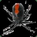 蜘蛛攻击-免费