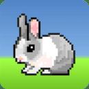 兔子蹦蹦跳