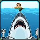 鲨鱼大餐 Shark Dinner
