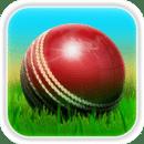 板球大战3D Cricket 3D