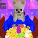 狗狗推金币